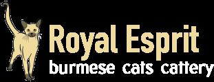 Royal Esprit Burmese Cattery